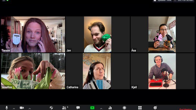 Skärmavbild från ett zoom-möte